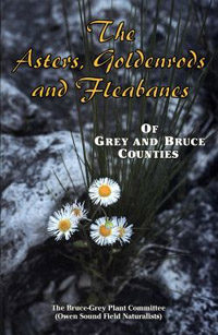 The Asters, Goldenrods & Fleabanes of Grey & Bruce Counties s