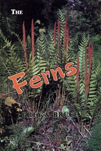 A Guide to the Ferns of Grey & Bruce Counties