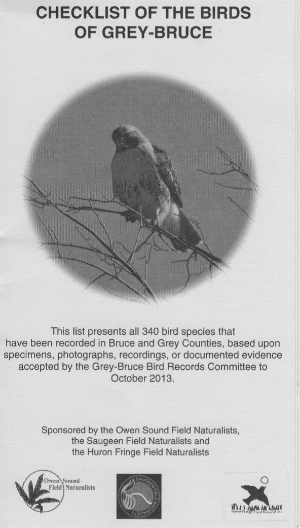Owen Sound Field Naturalists » Blog Archive » Grey-Bruce Bird