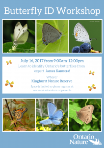 Butterfly ID Workshop Poster