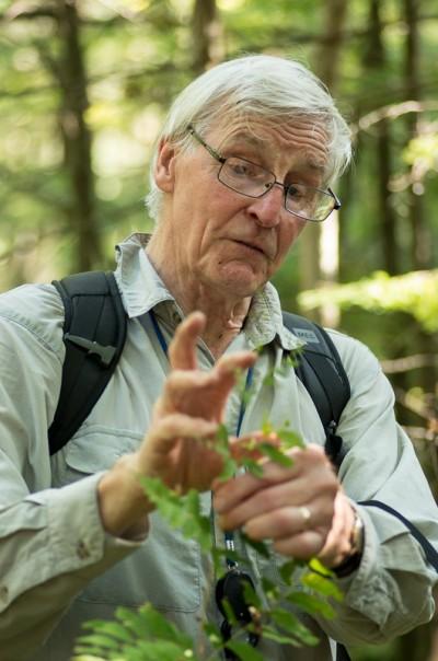 Peter Middleton explaining characteristics of a Royal Fern, Osmunda regalis. (Photo by Brian Robin)