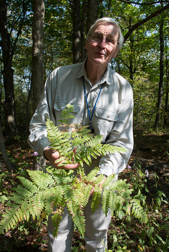Peter explaining the characteristics of a bracken fern (Photo by Brian Robin).