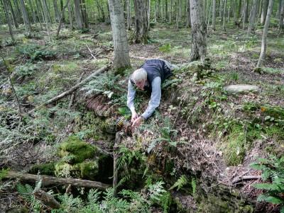 Peter Middleton leading an earlier fern hike.  (Photo by Carol Harris)